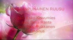 Jarmo Ranta - Vaaleanpunainen ruusu
