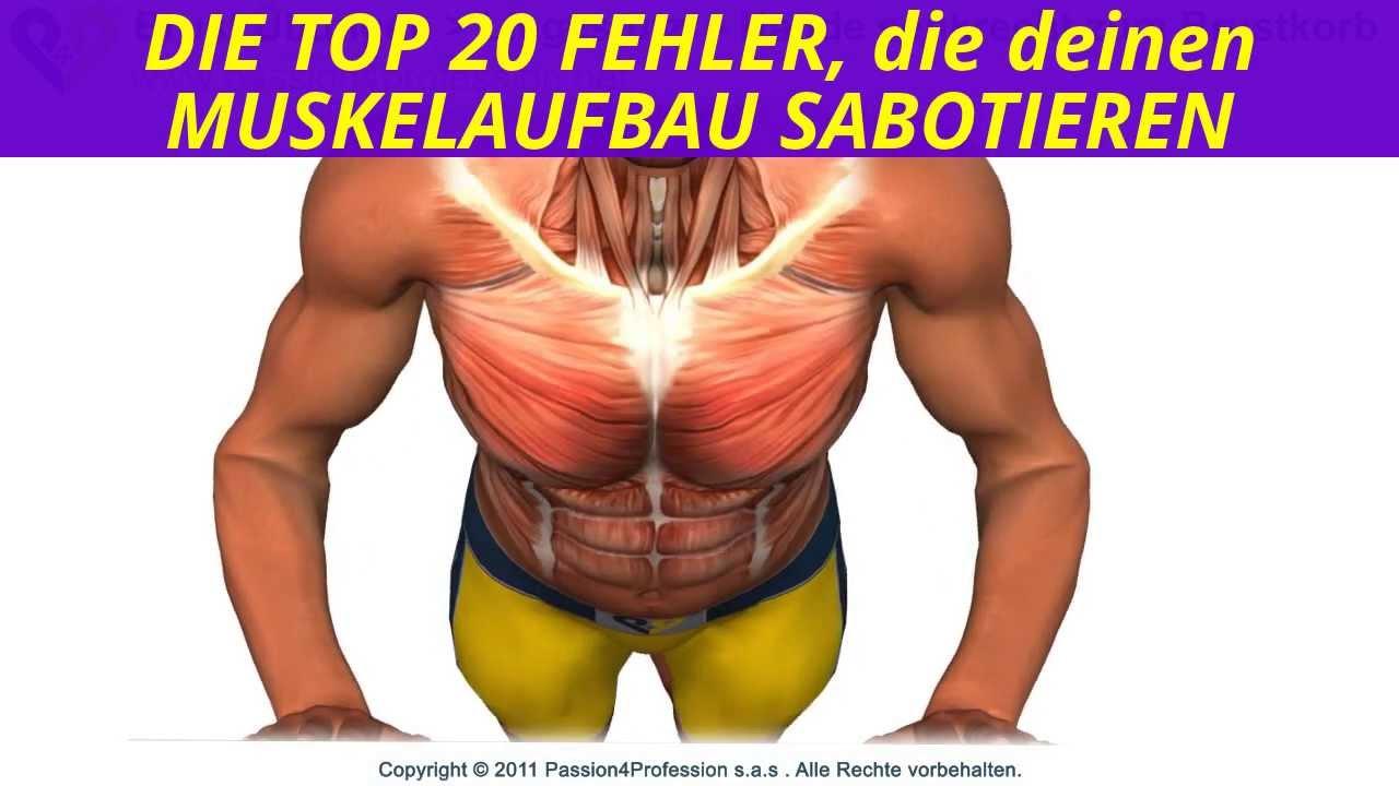Brustmuskel Trizeps Trainieren übungen Schneller