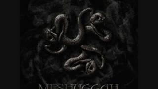 Meshuggah - In Death - Is Death