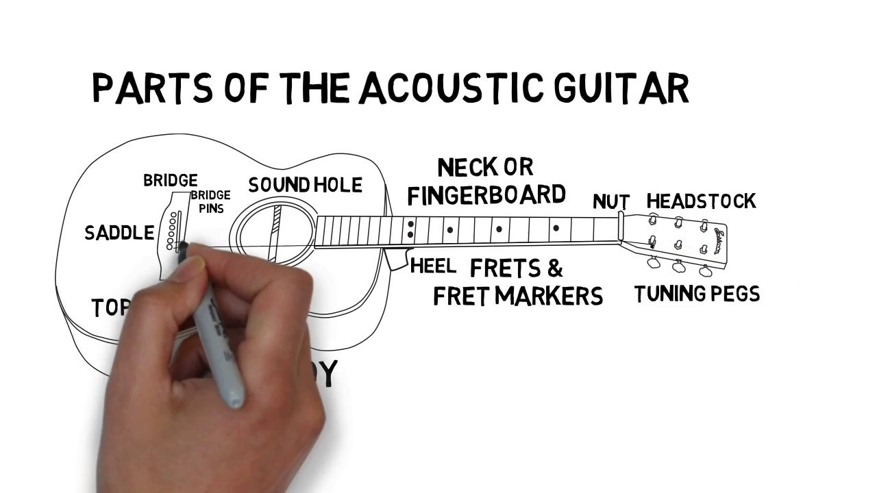 Parts Of The Acoustic Guitar Youtube Diagram