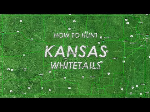 How To Hunt Kansas Whitetails