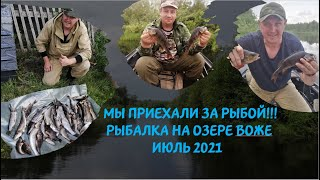 МЫ ПРИЕХАЛИ ЗА РЫБОЙ Рыбалка на озере Воже Июль 2021 Fishing on Lake Vozhe
