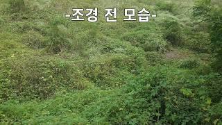 토지/시골땅/촌땅 매매비법/파는방법