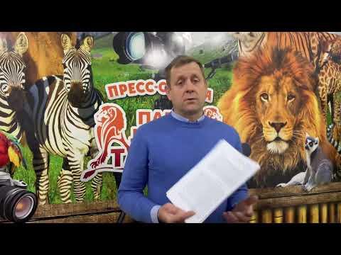 УРА !!! У Парка Львов Тайган ЕСТЬ РОССИЙСКИЙ ДОГОВОР АРЕНДЫ ЗЕМЛИ