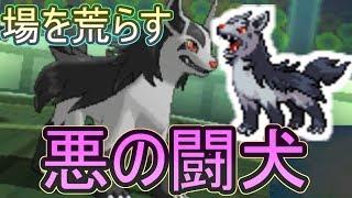 【ポケモンUSM】『悪の闘犬』グラエナがフィールドを荒らしまくり!その驚異の技構成とは