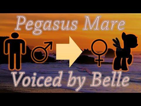 Pegasus Mare Transformation Hypnosis (MtF Sex Change + Imposition)