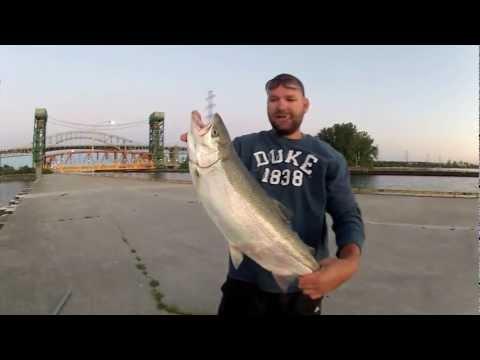 PIER FISHING HAMILTON