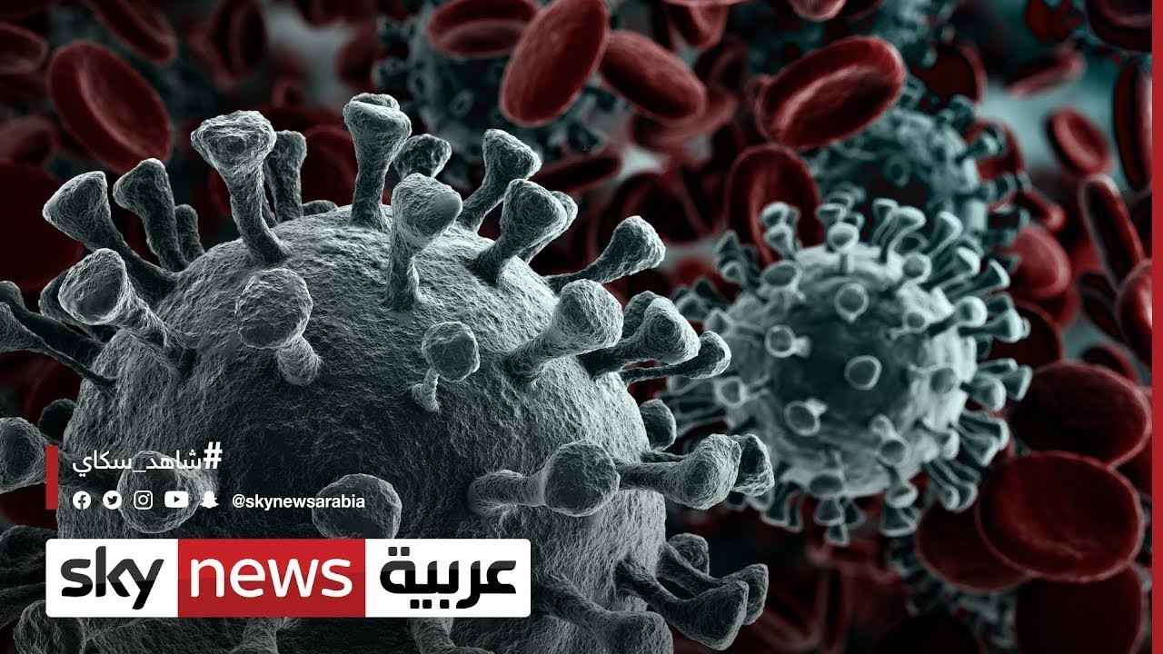 مجموعة الـ7 أعضاء من الوفد الهندي مصابون بفيروس كورونا  - نشر قبل 21 ساعة