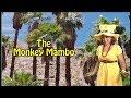 Monkey Mambo - Fun songs for kids by Mrs. Flutterbee