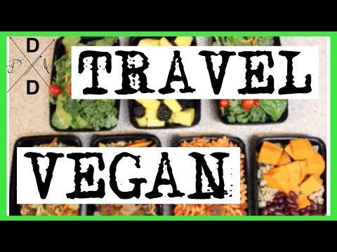 HOW TO: TRAVEL VEGAN|FLIGHT ATTENDANT STYLE