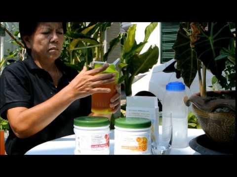Nutrilite Phyto Powder Preparation Review