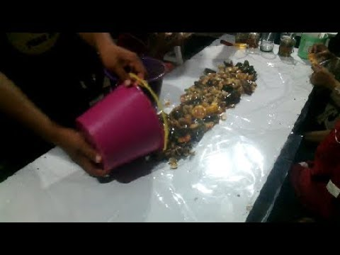 This Is One Of The Seafood Food Sellers The Most Delicious Crab Crab In Subang City