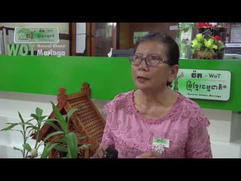 Wot Natural Khmer Moringa #Moringa farm ការបង្ហាញនូវចំការកសិកម្មធម្មជាតិរបស់សិប្បកម្មវ៉ត