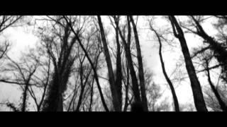 The Sade - BLACK DEMON - 2014 (from II album - 2013)