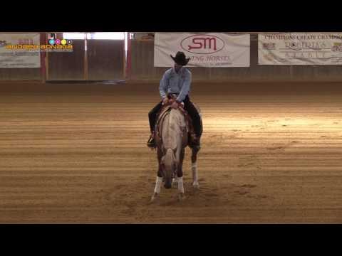 7yo&Up e 5 tappa APCR 2017 - MIDILI MIRKO su HONEY BEE FROZEN di FEDELE ALESSIA con score 72