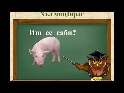 Даргинский язык видео тренажер , домашние животные
