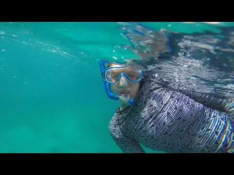 Snorkeling at Key Largo
