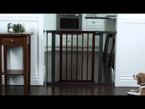 Munchkin Gates Youtube
