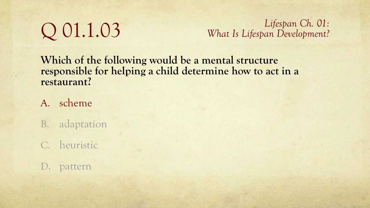 PSY 1100, Ch. 01: What Is Lifespan Development? / Review
