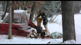 Fargo - Wood Chipper scene