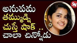 Shatamanam Bhavati Heroine Anupama  |brother | family photos |exclusive| Sitara News