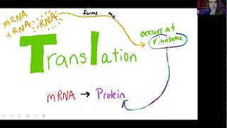 Bio 1010 Lecture 10.7 Translation