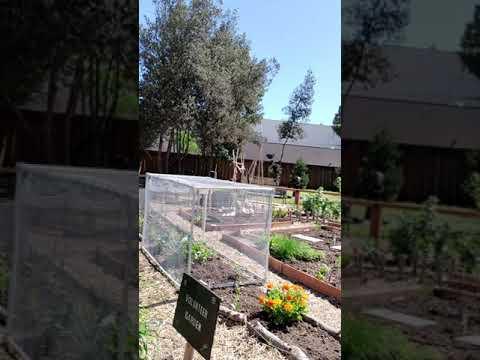 Heritage Park for Juana Briones Elementary School Art Project