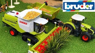 Bruder Combine farming! Tractor Claas action video for kids!