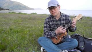 千の風になって 秋川雅史 ウクレレ弾き語りしました.