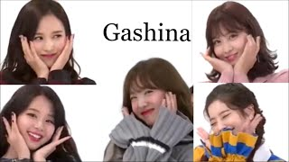 [TWICE/트와�스]TWICEメン�ー�Gashina(가시나)
