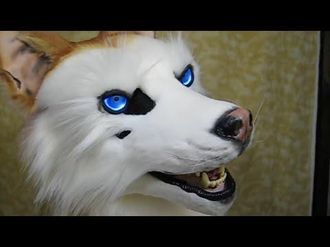 My Dog Eyes Not White