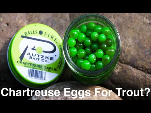 Can You Catch Trout With Chartreuse Salmon Eggs