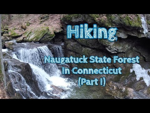 Hiking Naugatuck State Forest Part I || In Connecticut