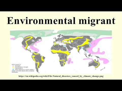 Environmental migrant