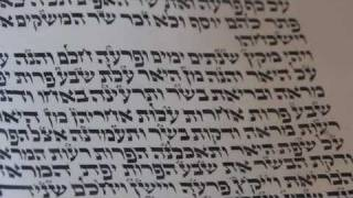 Torah Cantillation - Etnachta and Sof Pasuk.m4v