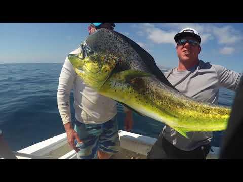 Baja Fishing Trip 2017