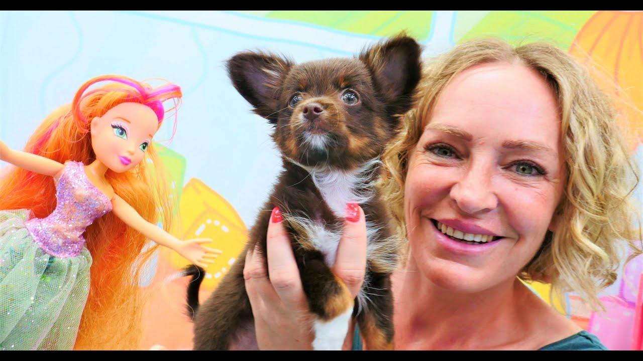 Die Winx Fee verwandelt Nicoles Plüschhund in ein echtes Hündchen - Spielzeugvideo für Kinder