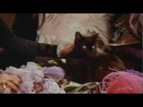 Grimes - Dream Fortress (Music Video)