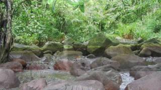 UN PARAISO OLVIDADO: Guinea Ecuatorial