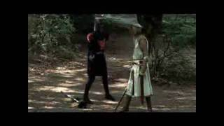 Just a Flesh Wound! (The Black Knight