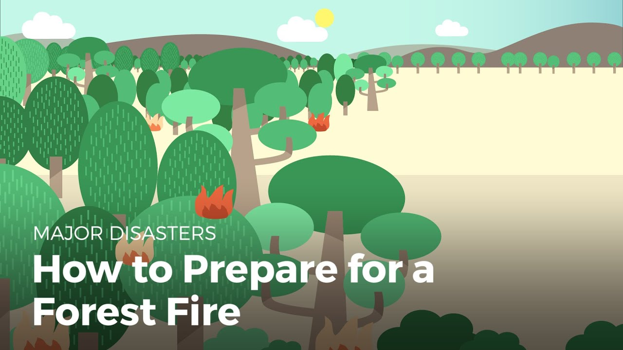 How to Prepare for a Wildfire