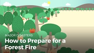 How to Prepare for a Forest Fire | Disasters