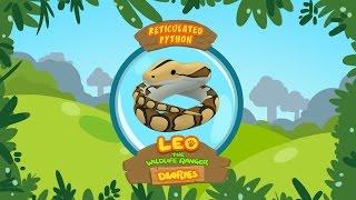 Leo The Wildlife Ranger Animal Diaries - Reticulated Python