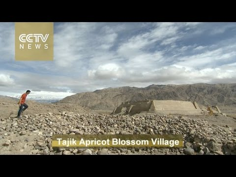 Travelogue with Tajik people: Modern life in Xinjiang's rocky mountains