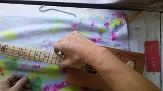 4 string acoustic cbg
