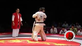 2010 WKO World Kumite Championships Middleweight Finals