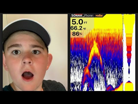 Vexilar Sonarphone review [Awesome sonar footage]