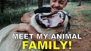 Dean Schneider  Hakuna Mipaka VLOG 6 Meet my Animal Family
