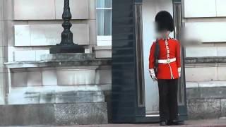 buckingham palace royal guard points sa80 at tourist