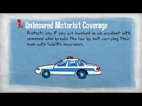 Insurance 101   Personal Auto Coverages